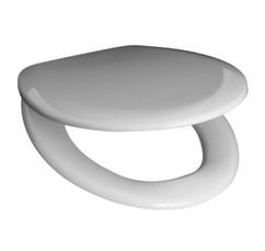 Сиденье с крышкой для унитаза Roca Mateo ZRU9302815
